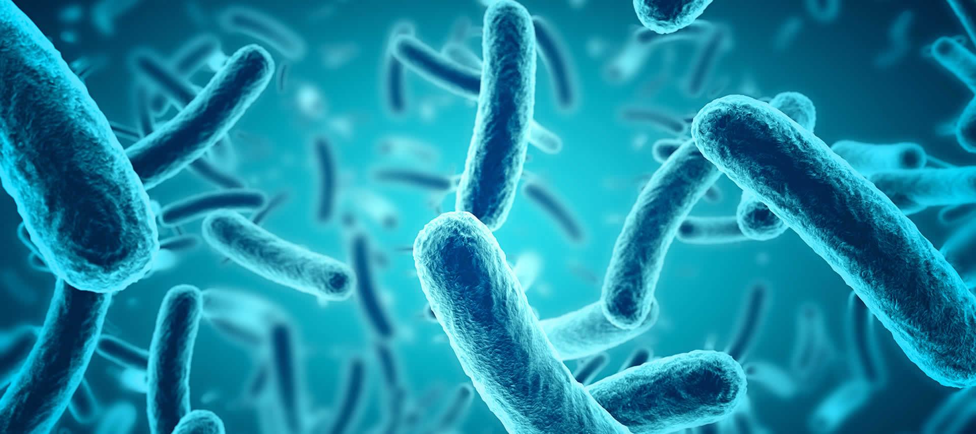 BioSpear Sanitizing Products